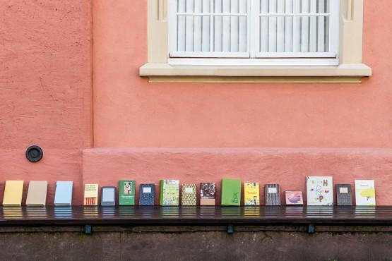 herr holgersson. lesen & leben